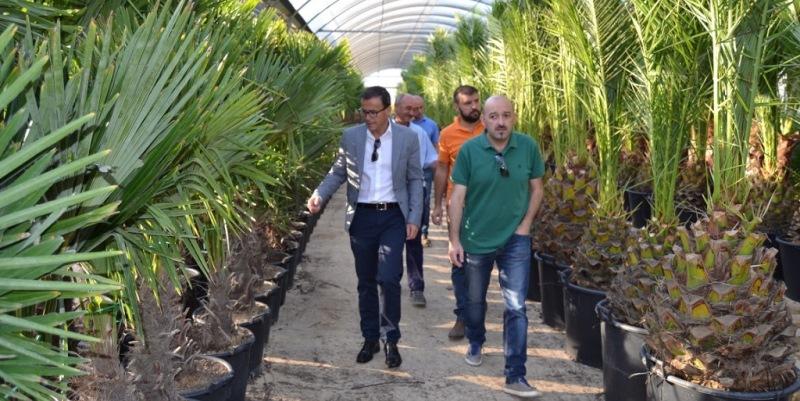 Miguel ngel gallardo visita el vivero de diputaci n en for Viveros en badajoz